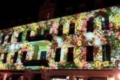 Wand-mit-Blumen